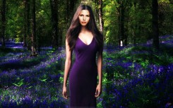 Wildflowers in the Woods (CC Manip by Lysa Whitmore)